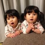双子のイヤイヤ期、パート1。1歳10ヶ月の双子姉妹。