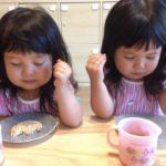 朝ドラ、べっぴんさんの姉妹はすみれとゆり?2歳4ヶ月の双子姉妹